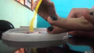Como Fazer Mechas Usando Creme
