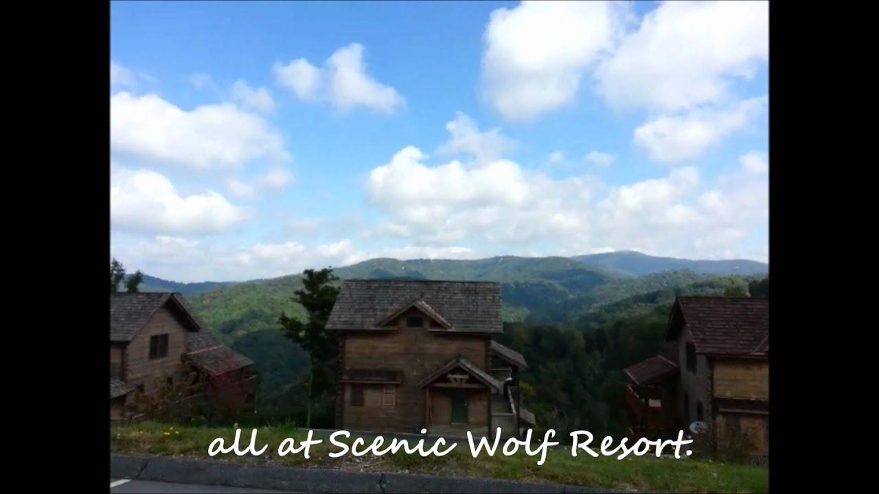 Carolina Mornings Asheville Nc Cabin Rentals Vacation