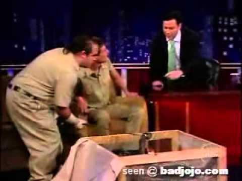 Homem mordido por Cobra ao vivo