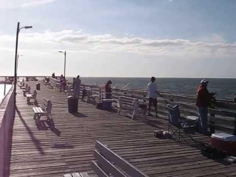 Fishing on the virginia beach fishing pier youtube for Va beach fishing