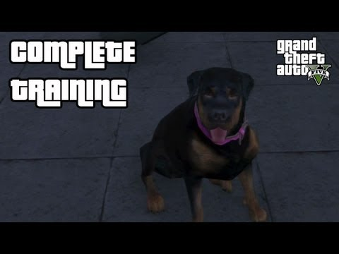 how to walk chop in gta 5 ps4
