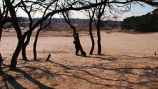 Loonse en Drunense duinen. Muziek: Vanessa Williams