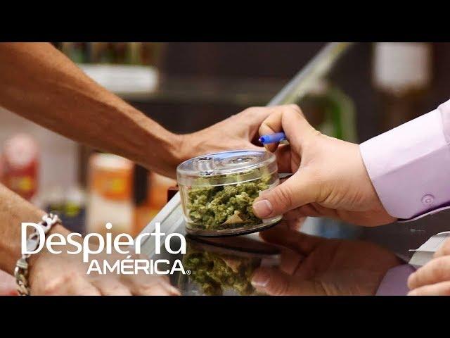 Cómo nos afecta la legalización de la marihuana en California