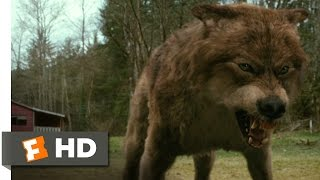 The Twilight Saga: New Moon (7/12) Movie CLIP Jacob's