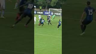 Nunziatini's overhead kick! ⚽🥳? #IMInter #Shorts