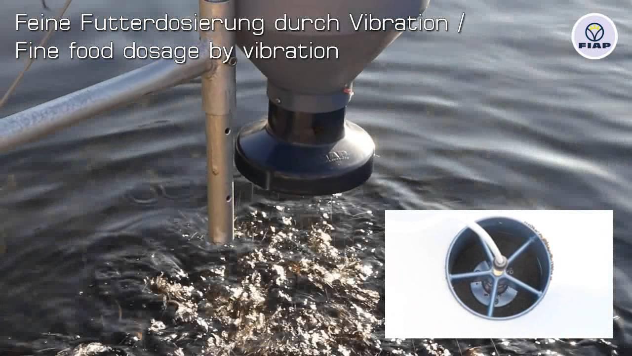 Fiap Brutf Tterer Fischfutterautomat Fiap Breeding Feeder Fish Feeding Automat Youtube