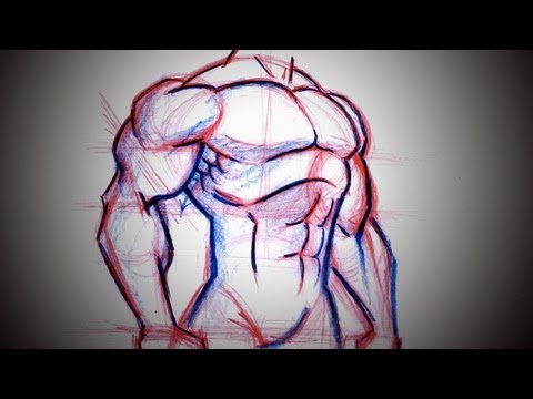 How To Draw Superhero Chest (Torso)