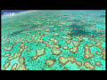 The Great Barrier Reef and other natural wonders of Australia - David Attenborough - BBC
