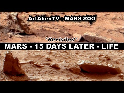 Mars 15 Days Later: REVISITED: Moving Animals? NASA Curiosity Rover. ArtAlienTV - MARS ZOO 1080p