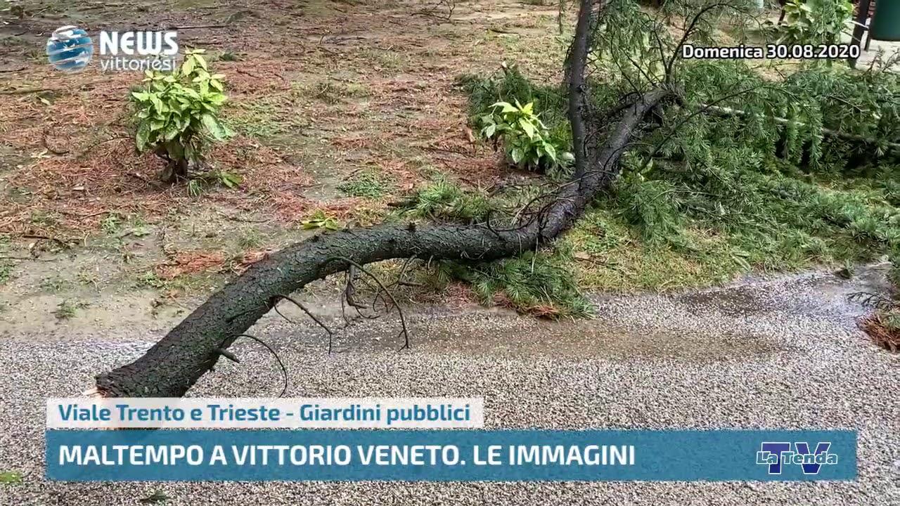 Maltempo a Vittorio Veneto - Le immagini