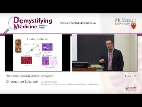 The obesity- immunity- diabetes connection. Dr. Jonathan Schertzer