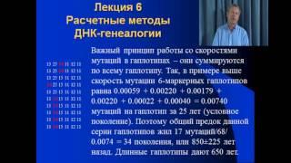 """""""Практический курс ДНК-генеалогия"""" - лекция 6"""