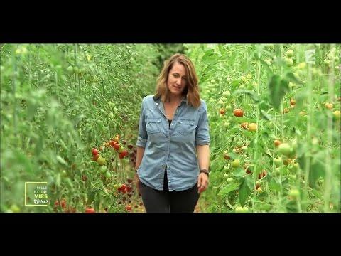 Une micro-ferme en permaculture pour produire sainement