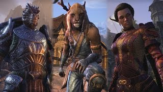 The Elder Scrolls Online - One Tamriel Frissítés