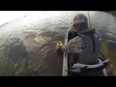 Fly Fishing for Snook in the Jackson Kayak Kilroy
