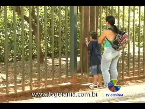 MACACOS ATACAM VISITANTES 20-07-2011