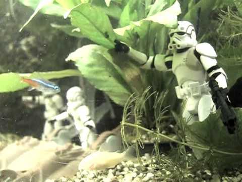 Star wars aquarium youtube for Star wars fish tank decorations
