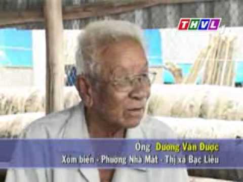02 Nhịp sống đồng bằng: Về miền Duyên Hải Bạc Liêu - mientay.net