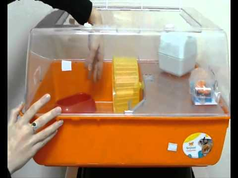 Домик для морской свинки видео