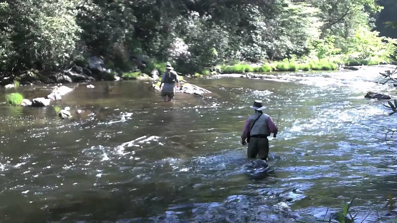 Fly fishing the chattooga youtube for Youtube trout fishing
