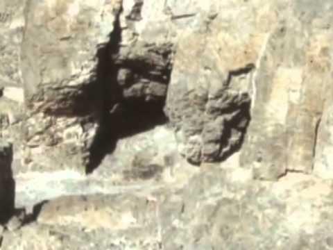 Abu Shaar - Ya nabi Alamo Alika (from syria)