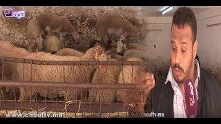 بالفيديو: كساب يفجر حقائق صادمة...نوعية الأعلاف اللي تاتعطى الماشية مثل السيكالين ..بزق الدجاج..الفنيد والضوباج من الأسباب اللي تاتخلي اللحم زرق وخانز |