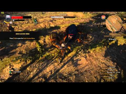 AMD FX8320 and GTX 970 - The Witcher 3 ULTRA quality gameplay with fps counter