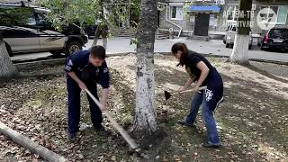 Спасение деревьев - в наших силах. В Артёме прошла экологическая акция.