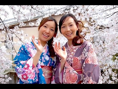 Moments in Kyoto - Sakura [1080p] Real Beauty Kyoto Cherry Blossoms Japan 京都の桜 着物美人と夜桜