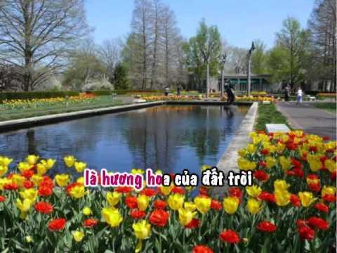 Karaoke Duong Tinh Yeu (Le Van Tu) -  Thanh Ngoc