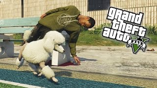 GTA 5 Easter Eggs Secret Bloodthirsty POODLE! Become A