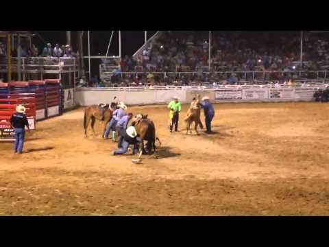 Wild Mare Race (Pecos,Tx) 2014 Finals Heat