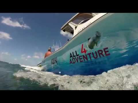All 4 Adventure & Sea Jay Boats
