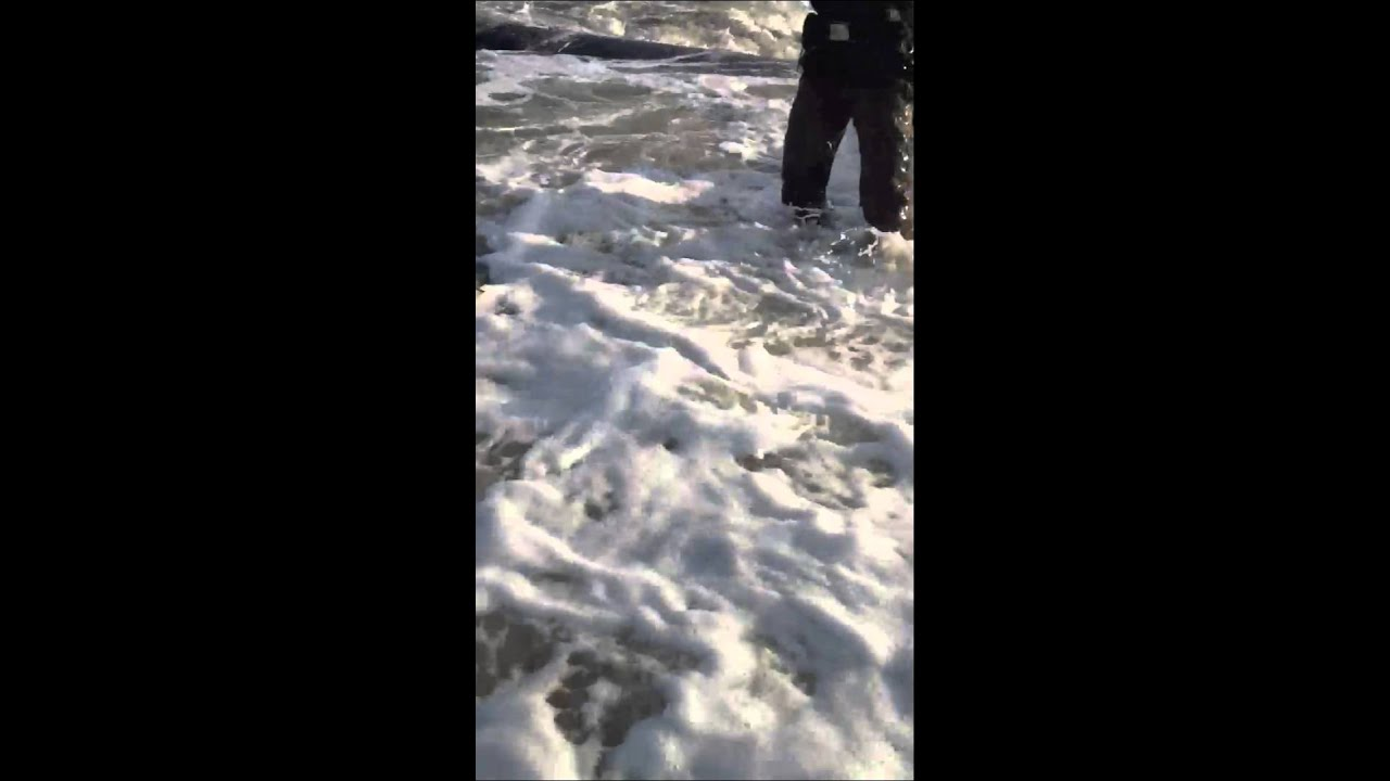 Surf fishing for striped bass in new jersey youtube for Nj surf fishing report