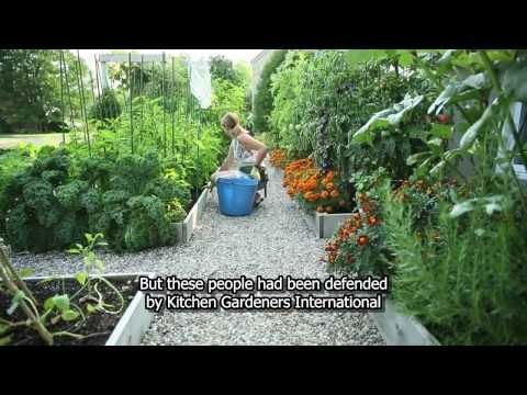 Chef s vegetable garden update phim video clip