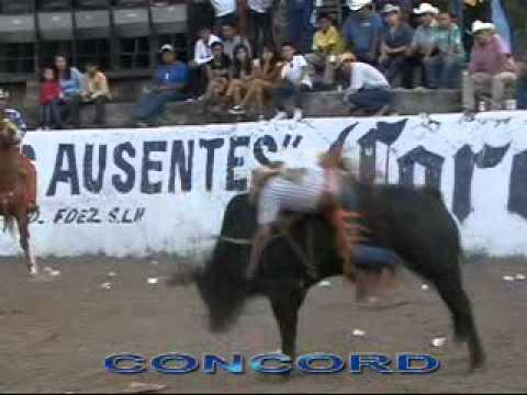 LO MEJOR DE LAS MONTAS MAS PERRONAS 2012  09