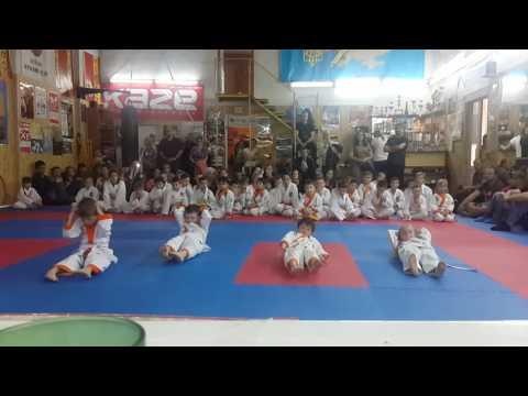 Аттестационный экзамен 29.05.2016 г. по каратэ в клубе Тигренок ч 1
