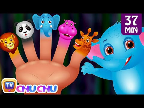 Finger Family Nursery Rhymes | Animal Finger Family Songs Collection | Learn Wild Animals | ChuChuTV