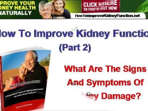 How To Improve Kidney Function Part 2