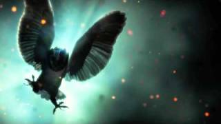 Legend of The Guardians Sountrack - 1. The Flight Home (The Guardian Theme) view on youtube.com tube online.