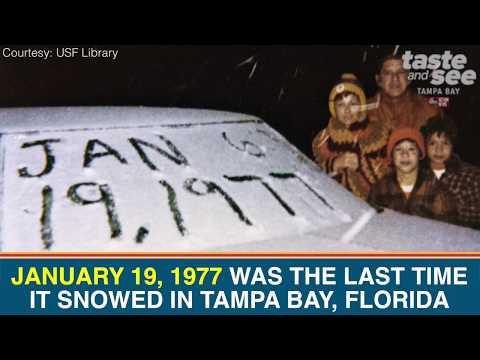 В Маями, щата Флорида, завинаги ще запомнят тази дата, защото през 1977 г. на този ден за първи път в известната история на града пада ... сняг.