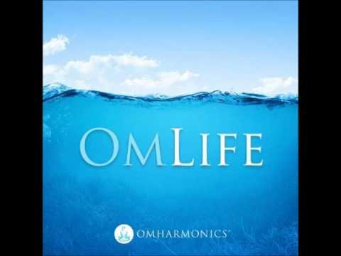 O Despertar - Meditação - IAH (Instituto de Auto Hipnose Brasileiro) | www.institutodehipnose.com
