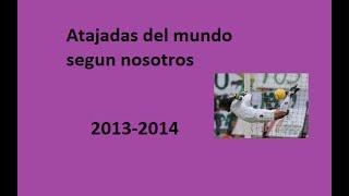 LAS MEJORES ATAJADAS DEL MUNDO 2013-2014