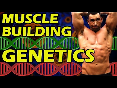 Get Bodybuilding Genetics 💪 How Fast Can You Build Muscle | Quickly Gain Muscle | Good Bad & Worst
