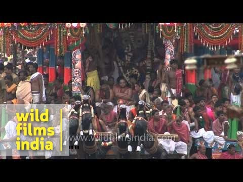Lord Jagannatha's cart begins to move - Puri's Rath Yatra