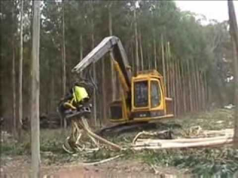 tree cut machine