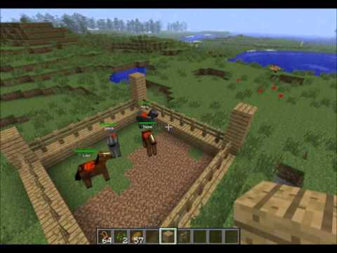 Minecraft Build: 5 enclos pour animaux - YouTube