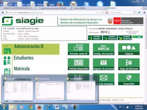 aperturaAñoEscolar 2014 Siagie - parte2