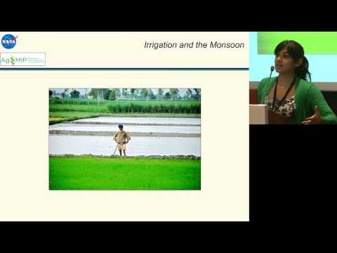 ILSI India: The Impact Of Intensified Irrigation (Dr. Sonali McDermid)