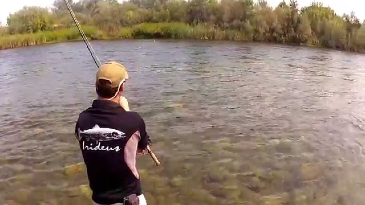 for Feather river fishing